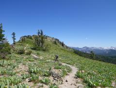 Climbing Ellis (Knee) Ridge