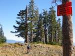 Atop Scott Peak