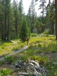 General Creek Trail